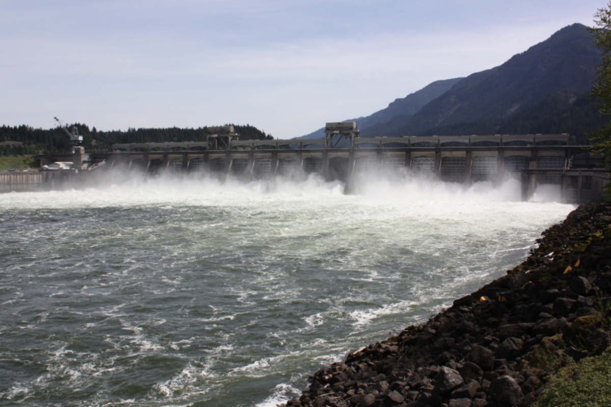 Hydro Power and the Public Good